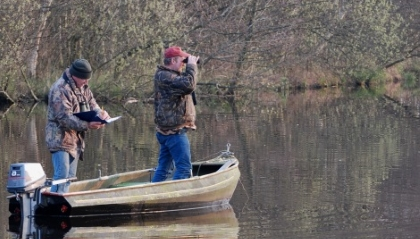 Afbeelding: Faunatellen vanuit boot