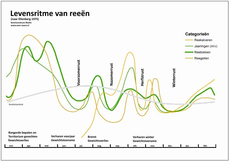 Grafiek: Levensritme van ree naar Ellenberg 1975