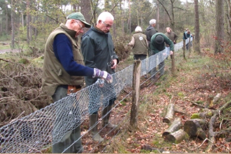 Afbeelding: Vrijwilligers rasterploeg Vereniging het Edelhert brengen manchet op schapengaas aan