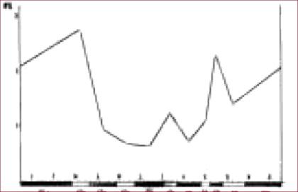 Figuur 3: Jaarrondontwikkeling bandbreedte voedselkeus damhert